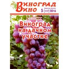 Виноград. Вино