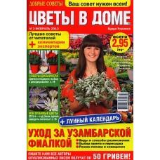 Цветы в доме (Росія)