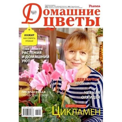 Домашние цветы (Росія)